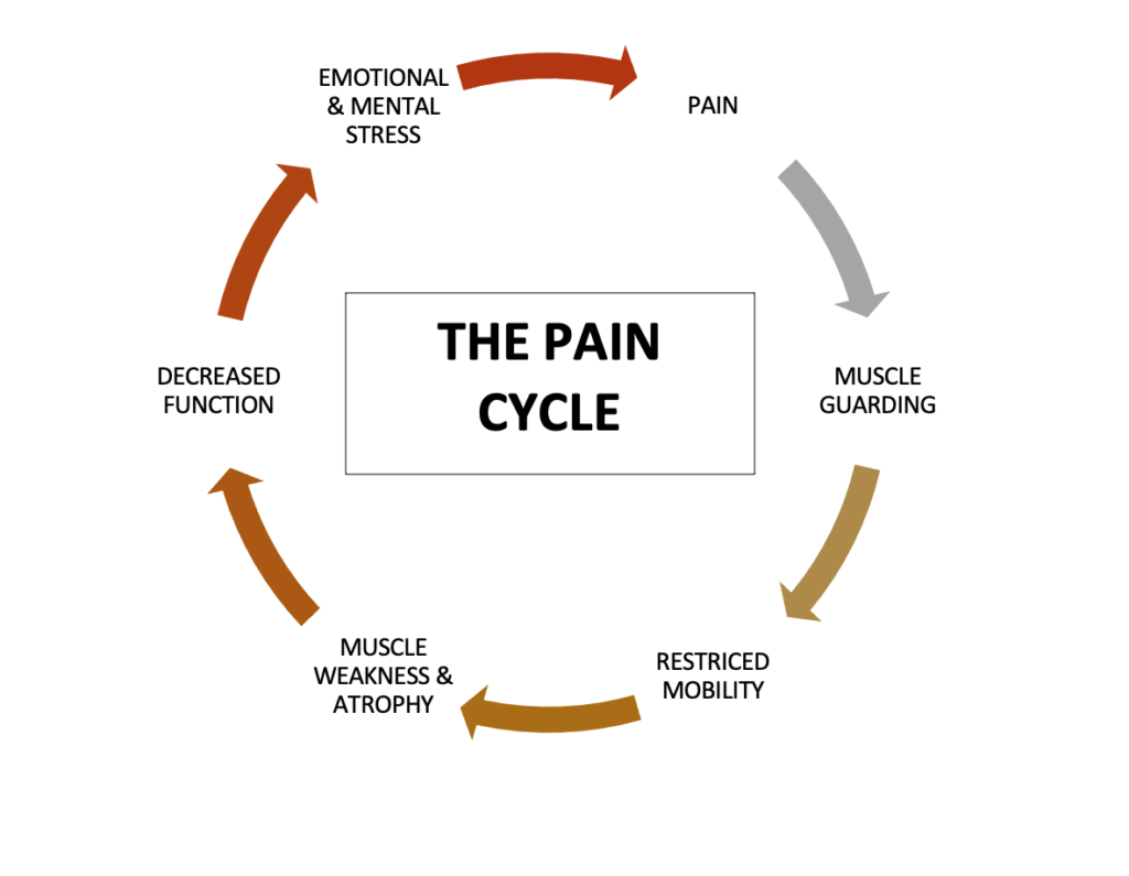 Muscle guarding and pain cycle